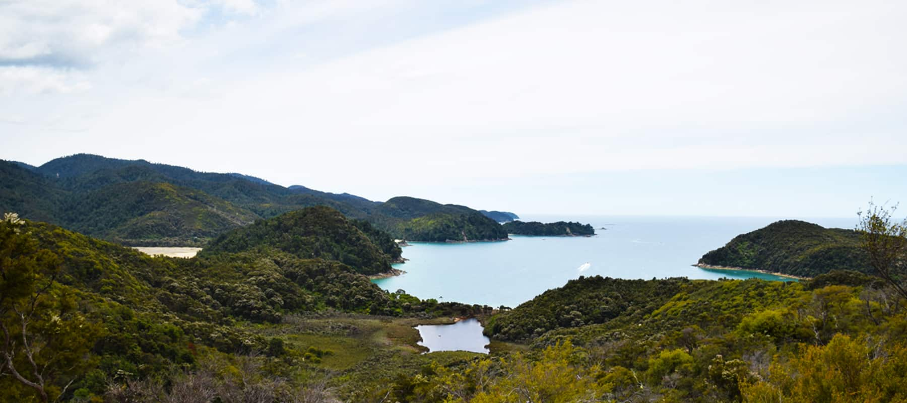 Abel Tasman national park: Phoque off