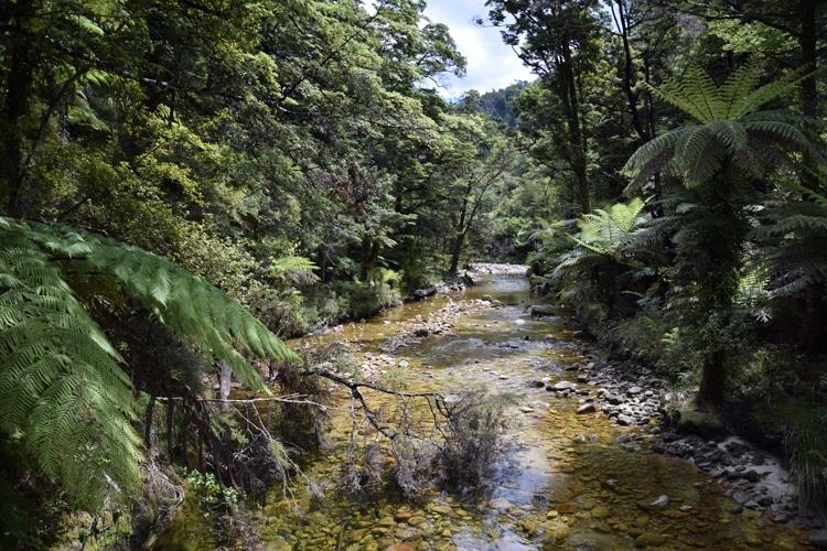 abel-tasman-rivière