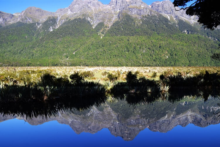 milford-sound-mirror-lake