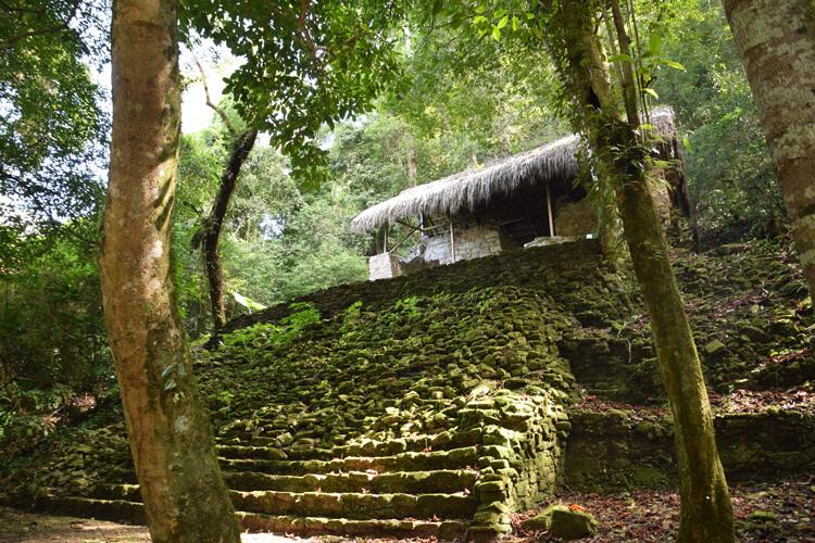 palenque-escalier