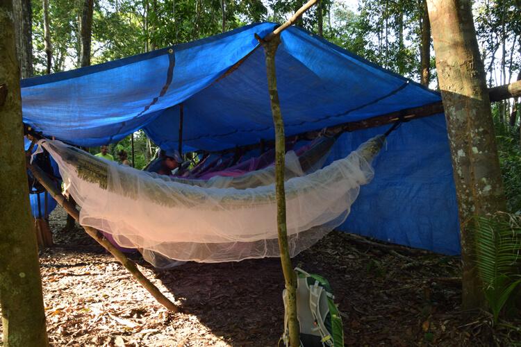 Amazonie hamac