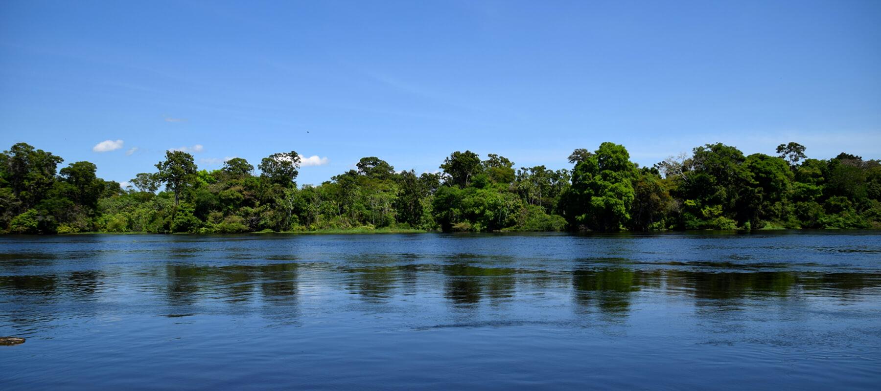 Amazonie: Cinq jours dans la forêt Amazonienne