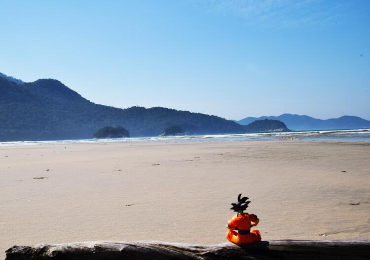 Son Goku Ilha Grande