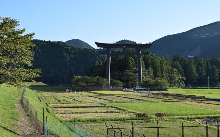 Hongu torii géant
