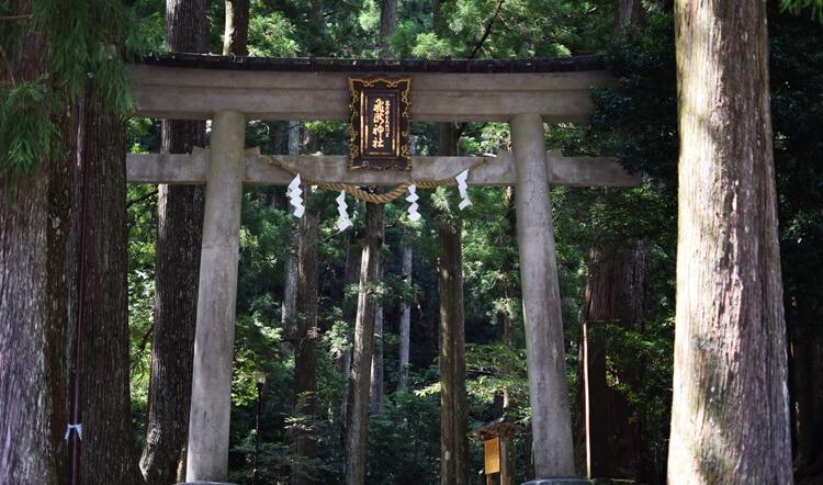 Kumano kodo torii nachi