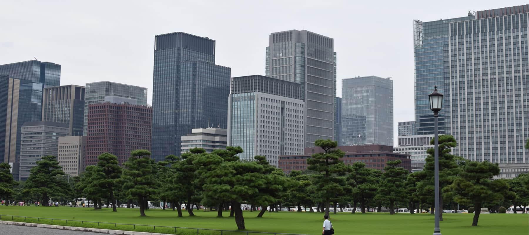 Tokyo: Visite de la capitale Japonaise