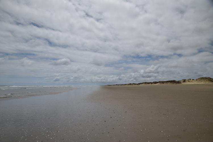 ninety-milae-beach