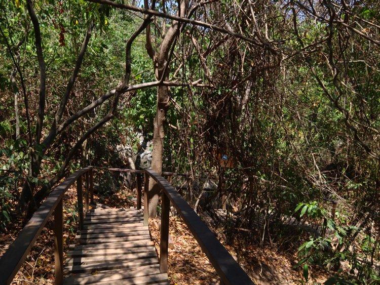 Sentier parc Tayrona
