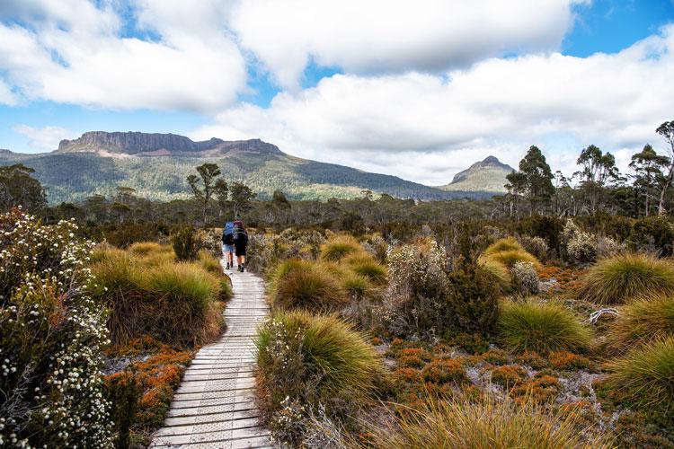Les plus beaux treks du monde Overland Track